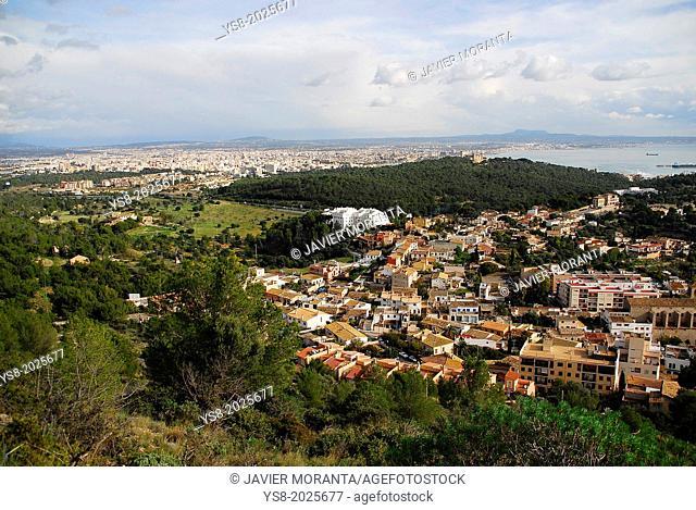 View of the city of Palma, Palma de Mallorca, Balearic Islands, Spain