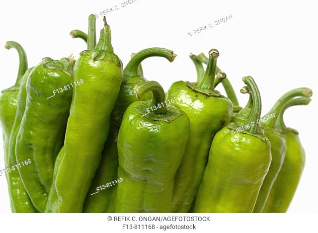 isolated stuffed peppers in bazaar