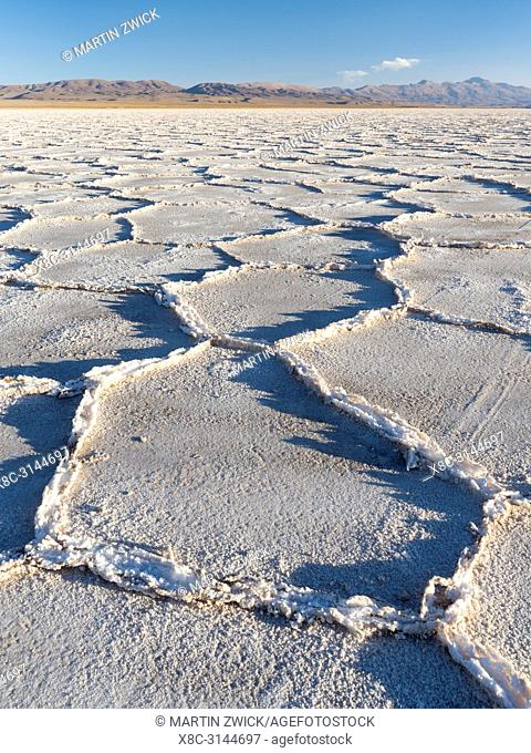 Surface of the Salar predominantly natriumchloride. Landscape on the salt flats Salar Salinas Grandes in the Altiplano. South America, Argentina