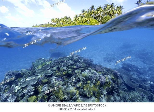 Split image of pristine coral reef and island, Rongelap, Marshall Islands, Micronesia