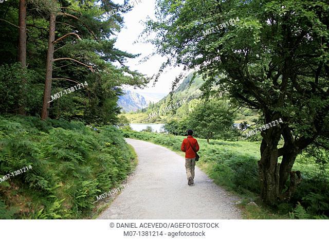 Man walking near upper lake, Glendalough, Ireland