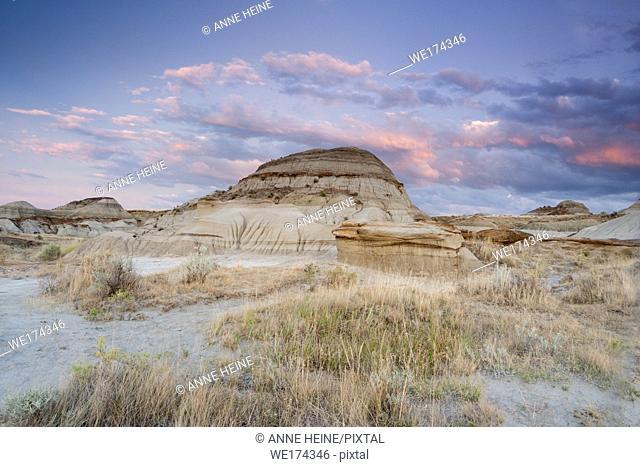Badlands (barren, arid sandrock formations) in Dinosaur Provincial Park of Alberta, Canada