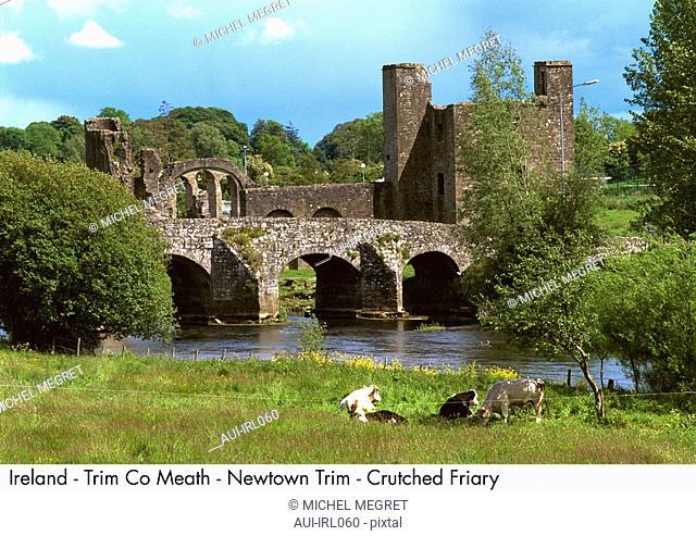 Ireland - Trim Co Meath - Newtown Trim - Crutched Friary