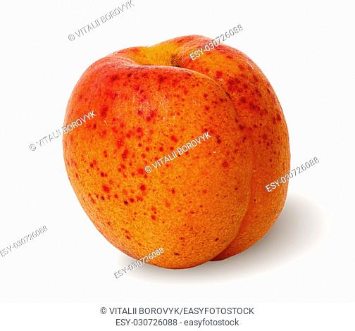 Ripe juicy apricots rotated vertically isolated on white background