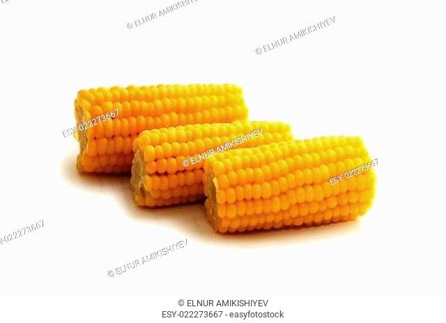 Three corn cobs isolated on white background