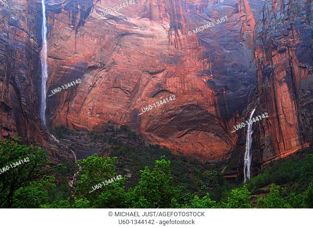 Twin waterfalls appear,after a hard rain at Zion National Park, Utah