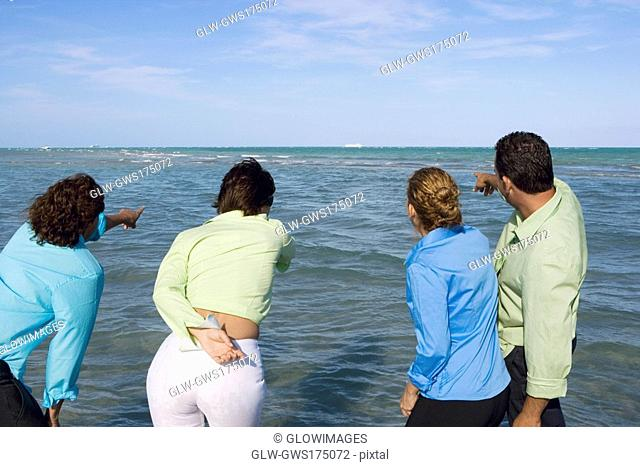 Rear view of two mid adult couples pointing towards waves
