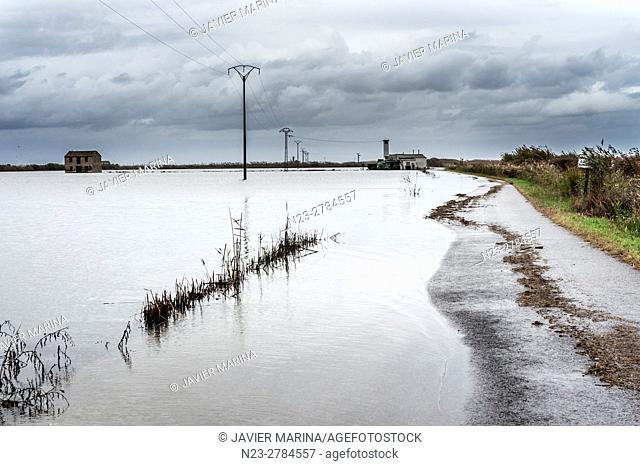 Rice fields and flooded road, El Perello, Valencia, Spain