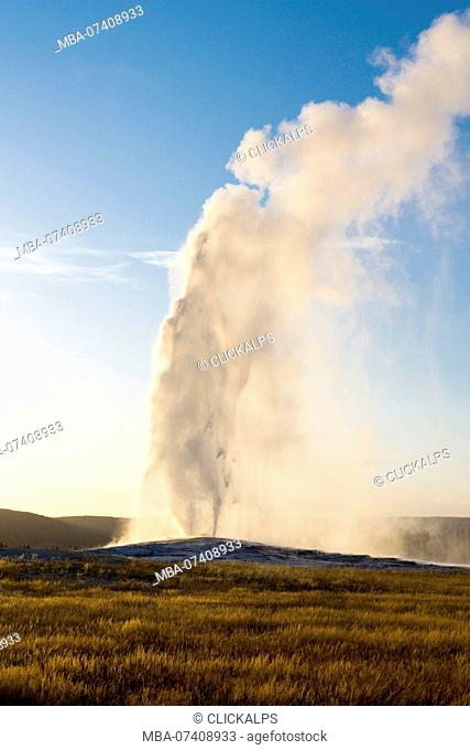 Old Faithful geyser eruption, Upper Geyser Basin, Yellowstone National Park, Teton County, Wyoming, USA