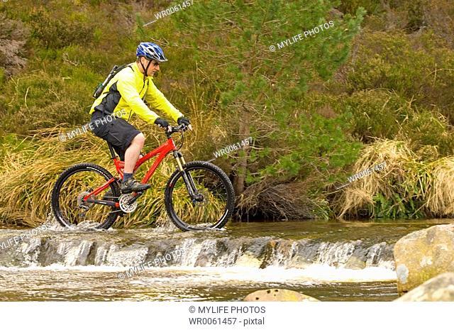 riding the stream