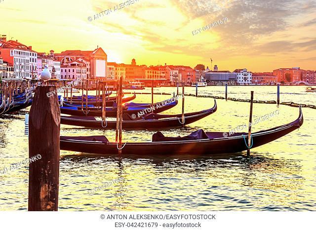 Gondola's and vaporetto wharf near Doge's Palace in Venetian Lagoon, Venice