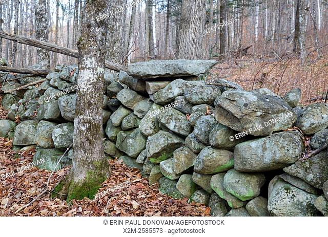 Stone wall at the abandoned Gilbert P. Wright homestead along the old East Road in Benton, New Hampshire USA. This road is located off the North and South Road...