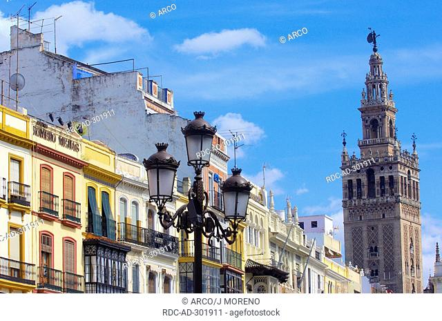 Giralda tower, former minaret, view from San Francisco Square, Seville, Andalusia, Spain / Renaissance
