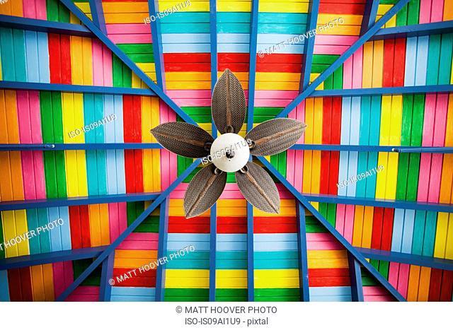 Petal-shaped fan on multi-coloured wooden ceiling