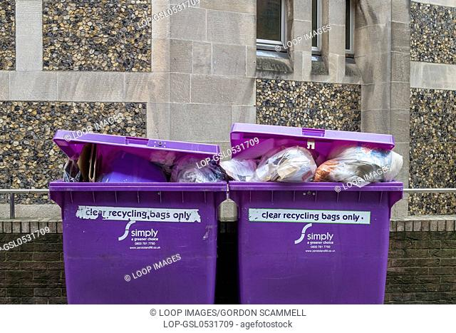 Purple recycling bins