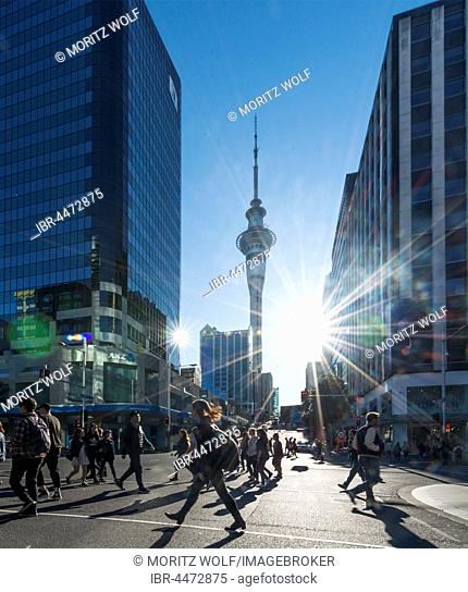 Pedestrians crossing street, Sky Tower, backlit with sun star, Central Business District, Auckland Region, North Island, New Zealand