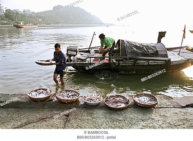 People unloading baskets of fish in Xialongwan, Xialong City, Guangning Province, Vietnam