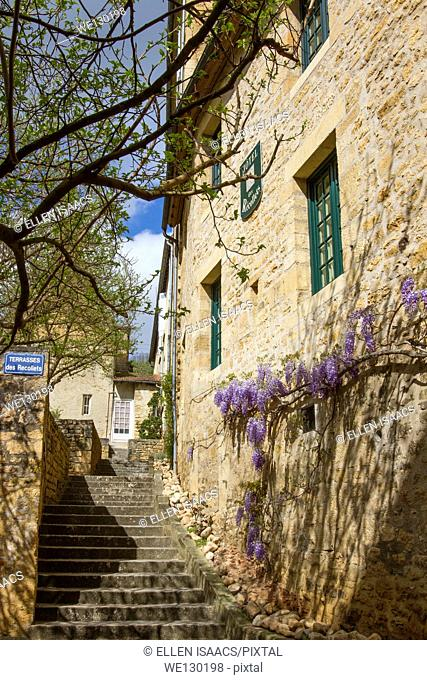 Wisteria growing along beautiful sandstone building in charming Sarlat, Dordogne region of France