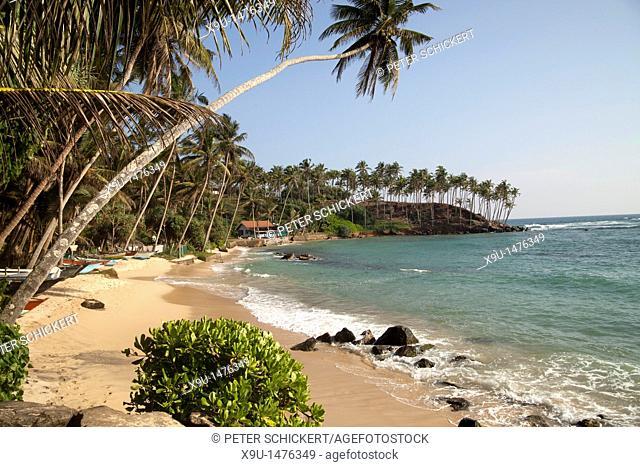 fishing boats at the dream beach in Mirissa, Sri Lanka
