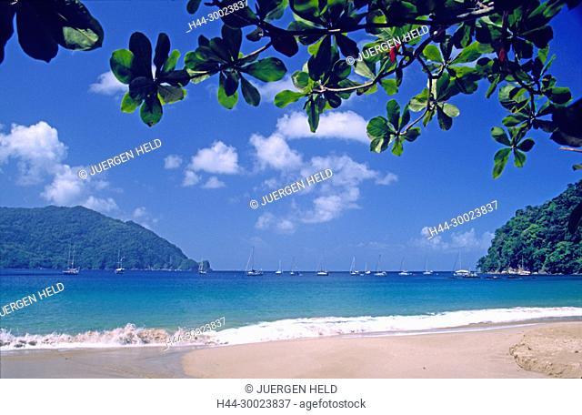 Tobago, Charlotteville, Man of War bay, beach