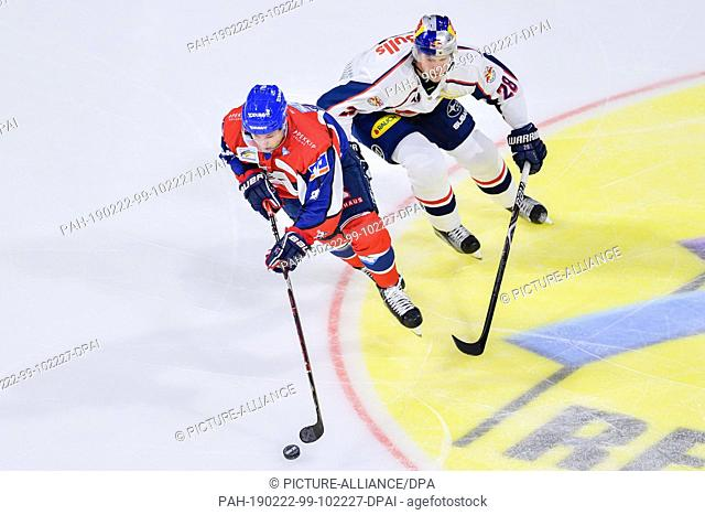 22 February 2019, Baden-Wuerttemberg, Mannheim: Ice hockey: DEL, Adler Mannheim - EHC Red Bull Munich, main round, 49th matchday, in the SAP Arena