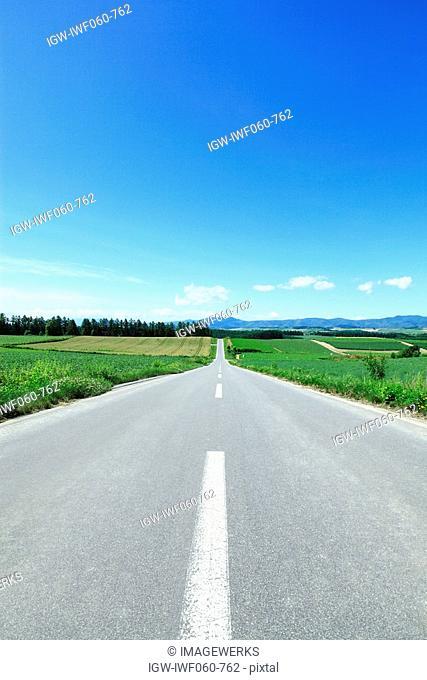 Open country road between fields