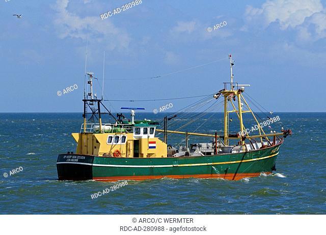 Shrimp boat in Wadden Sea, Oudeschild, Texel Island, Netherlands