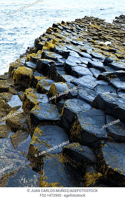 The Giant's Causeway  World Heritage Site  Causeway Coastal Route  Antrim County, Northern Ireland, Europe