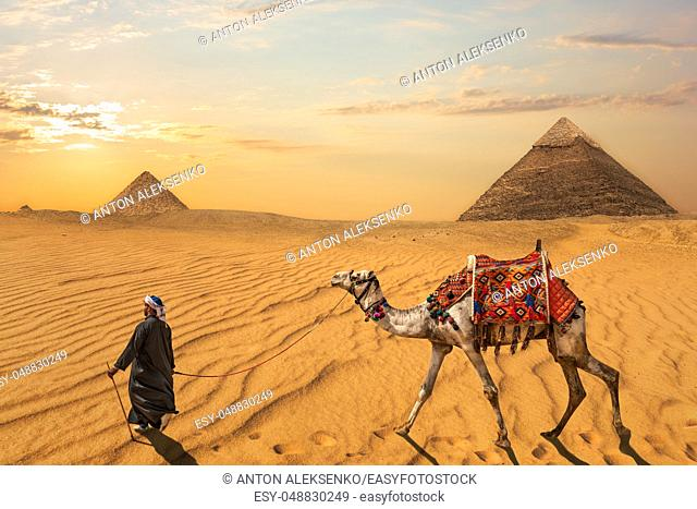 A bedouin with a camel in front of the Pyramid of Khafre and the Pyramid of Menkaure, Egypt