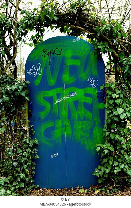 graffiti on garden door