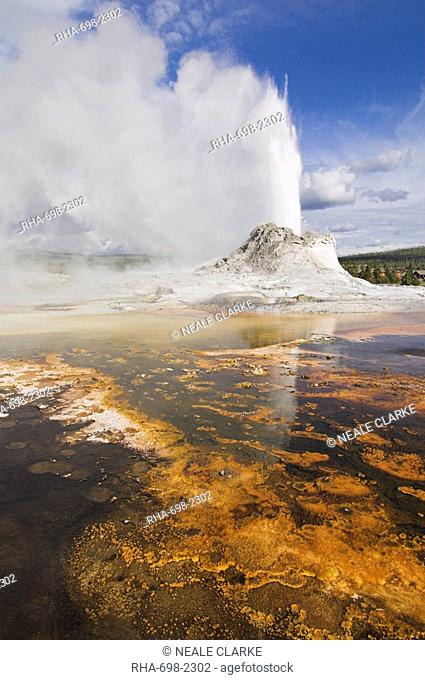 Eruption of Castle Geyser with thermophilic bacterica mats in foreground, Upper Geyser Basin, Yellowstone National Park, UNESCO World Heritage Site, Wyoming
