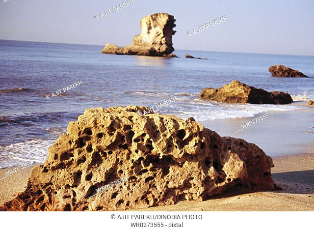 Sea-stack , rocky pillar at Saurashtra , Gujarat , India