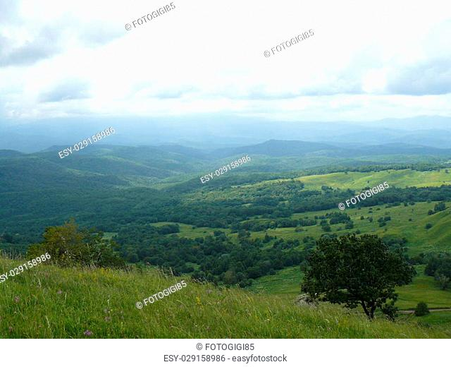 Landscape. The blossoming meadows on slopes of hills