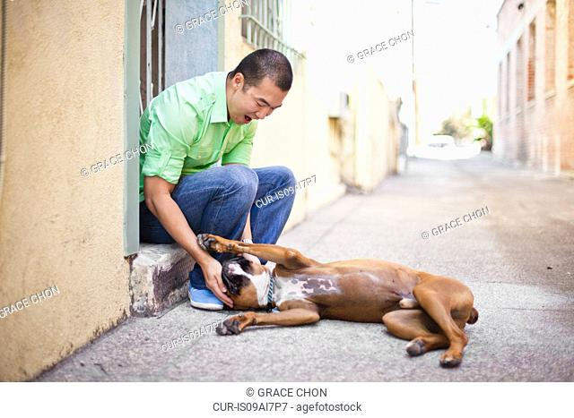 Mid adult man playing with his boxer dog on doorstep