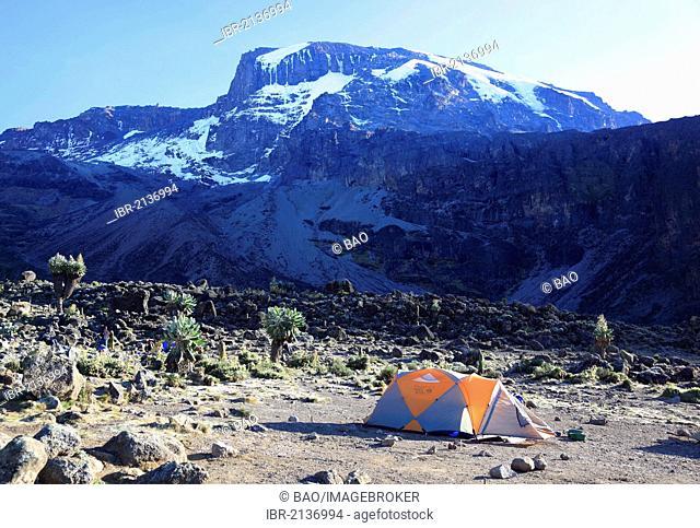 Karanga Camp, Mount Kilimanjaro, Tanzania, Africa