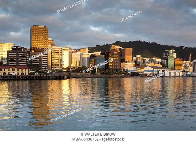 New Zealand, North Island, Wellington, skyline from the harbor, dawn