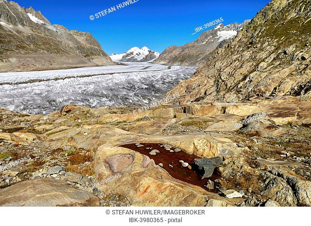 Great Aletsch Glacier, mountains Eiger and Mönch at the back, Canton of Valais, Goms, Switzerland