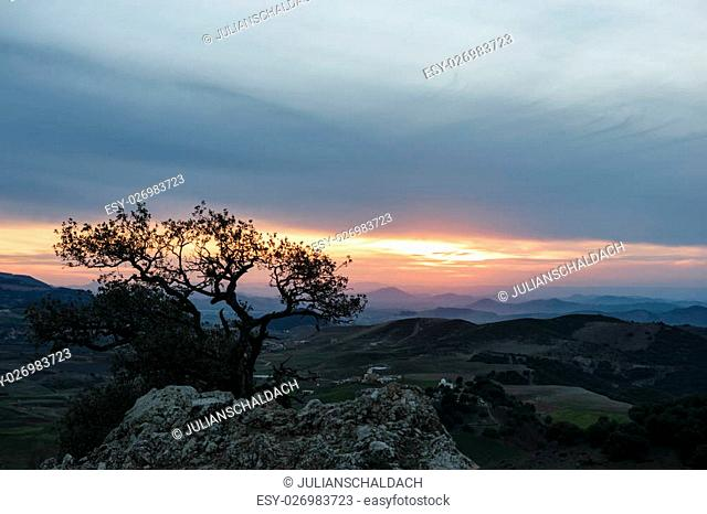 Amazing view from a hill over the landscape of the Province Ifrane in Morocco at sunset and with nice colors in the sky and a tree in the foreground
