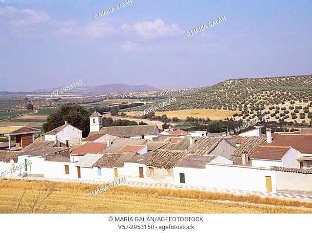 Overview and Vega de Granada. Tocon, Granada province, Andalucia, Spain