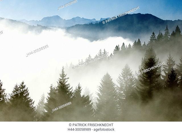 View of the Ratenpass, Zug Switzerland