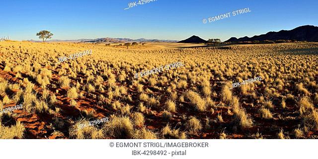 View over NamibRand Nature Reserve, Namib Desert, Namibia