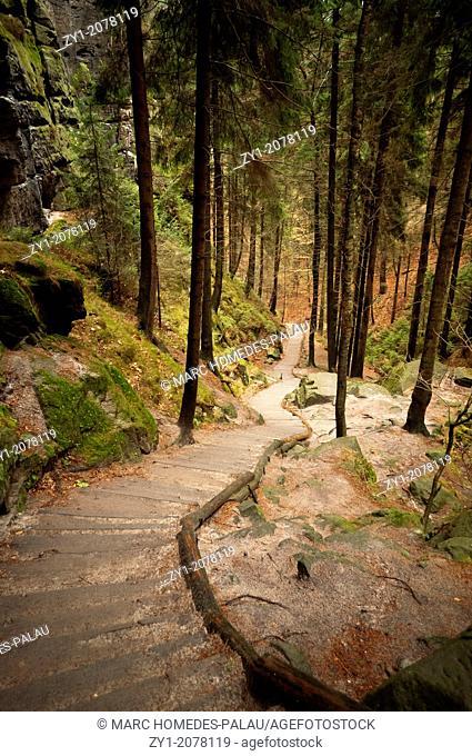 Saxon Switzerland in Germany