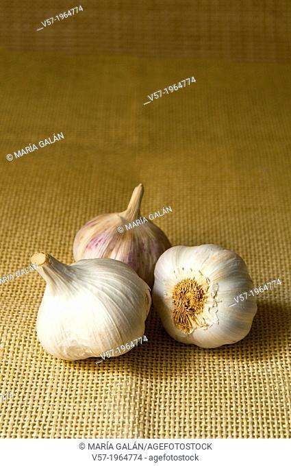 Three garlics. Still life