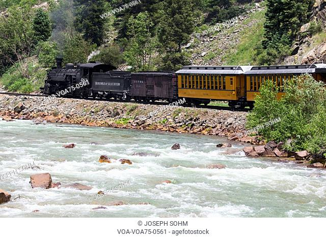 The Durango and Silverton Narrow Gauge Railroad Steam Engine travels along Animas River, Colorado, USA