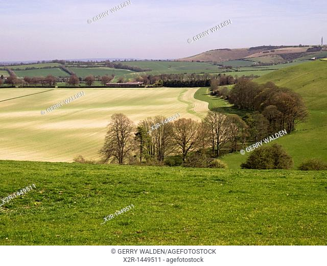 Panoramic landscape from Old Winchester Hill in the South Downs National Park in Hampshire England showing newly planted field