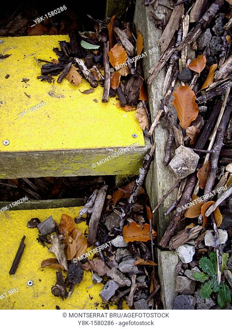 Yellow outdoors steps