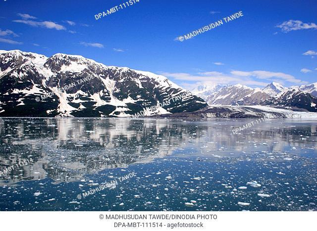 Icebergs with Hubbard glacier and saint Elias mountain ;  The longest tidewater glacier in Alaska ; Saint Elias  national park ; Disenchantment bay ; Alaska ; U