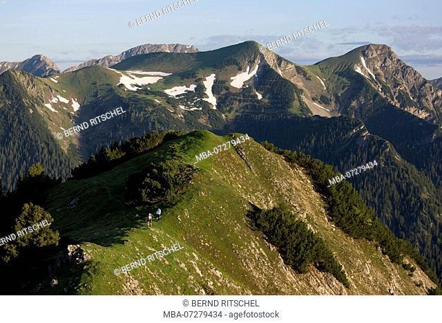 At Hohen Ziegspitz, Ammergau Alps, close Garmisch, Upper Bavaria, Bavaria, Germany