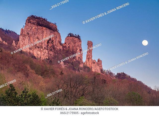 Tours de Saint-Jacques in the Natural Park des Massif de Bauges, Haute-Savoie, Rhône-Alpes, France