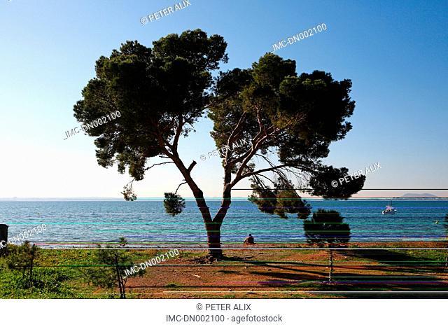 Spain, Balearic islands, Alcanada beach